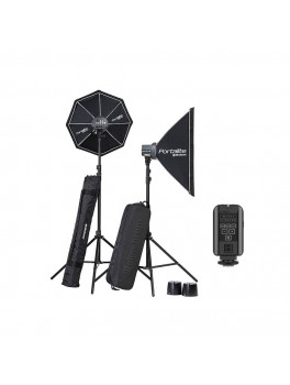 Elinchrom D-Lite RX 4/4 TO GO-20